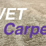Can You Vacuum Wet Carpet – Don't Do it!