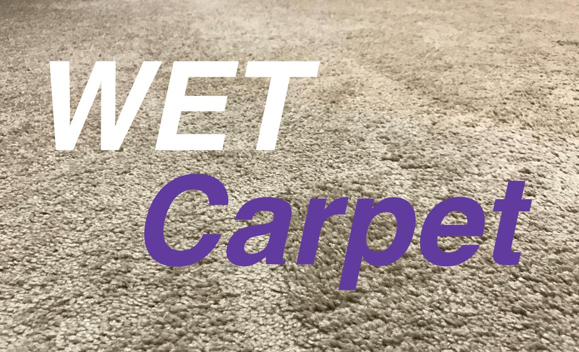 Wet Carpet Baking Soda Carpet Vidalondon